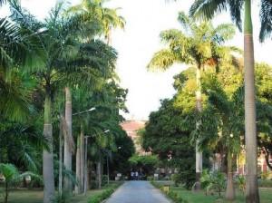Parque da Tamarineira